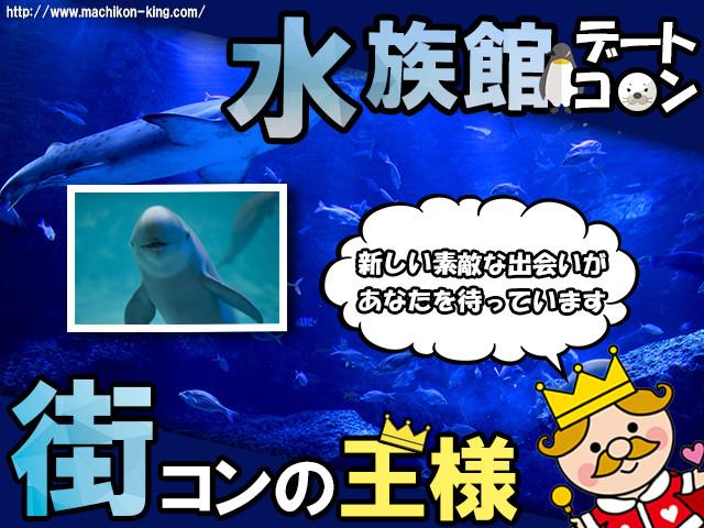 名古屋港水族館デートコン