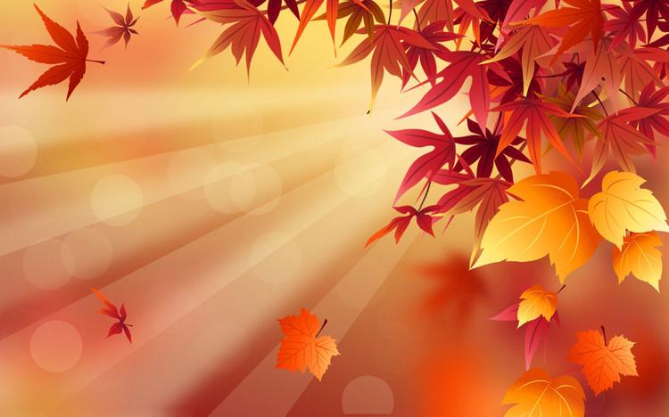 Autumn20代コン