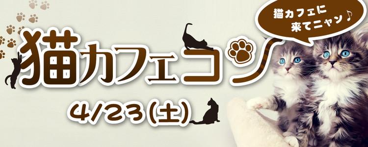 第236回 プチ街コンin袋町【猫カフェコン】