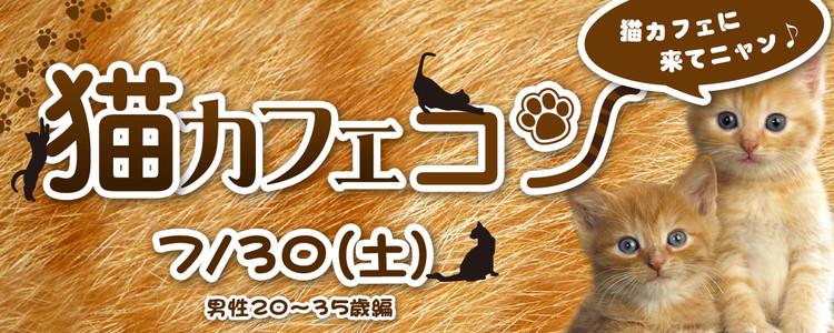 第257回 プチ街コンin猫カフェ-男性35歳以下