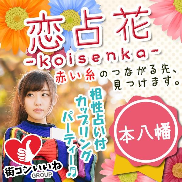 恋占花-koisenka- 本八幡