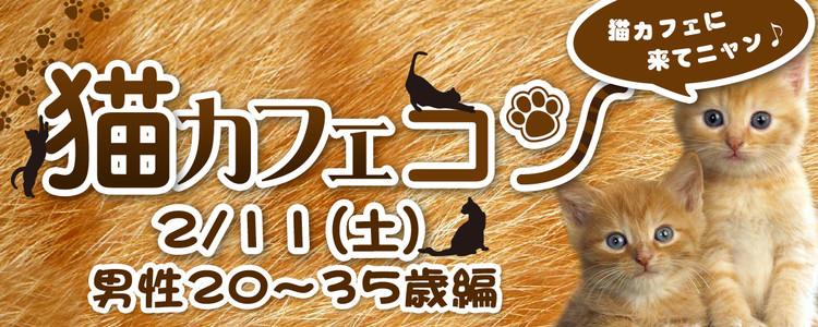 第304回 プチ街コンin猫カフェ【男性35歳以下】