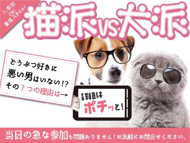 街コンプラチナム@福岡〜猫派vs犬派〜