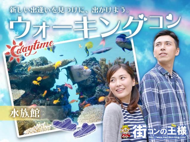 名古屋港水族館deウォーキング 20代