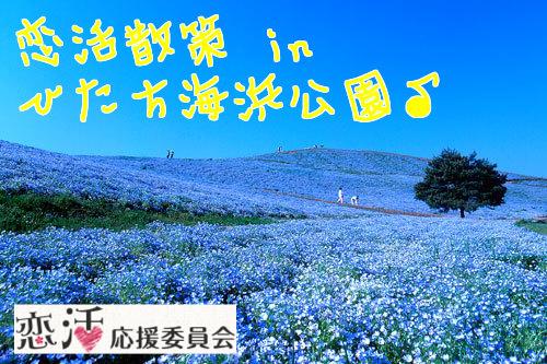 第3回 恋活散策 in ひたち海浜公園