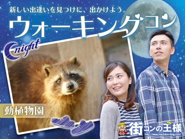 東山動植物園夜ウォーキング30代40代