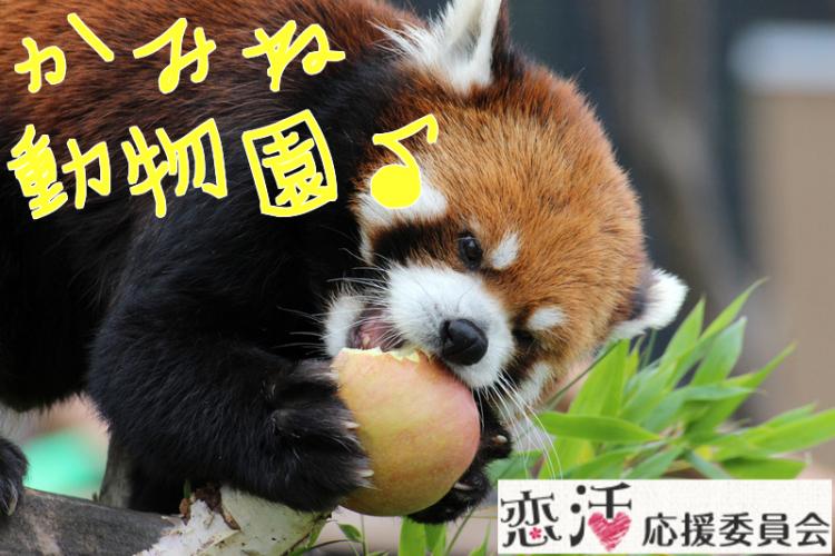 第3回 恋活散策 in かみね動物園