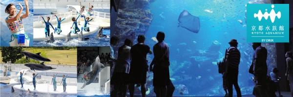 【京都】水族館で楽しいクリスマス♪