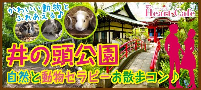 井の頭公園で自然と動物セラピーお散歩コン