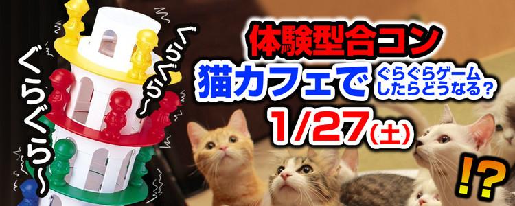 第384回 プチ街コン【猫カフェ合コン】