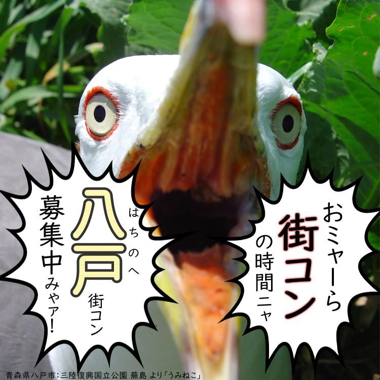 第38回 八戸街コン 6周年大感謝祭!!