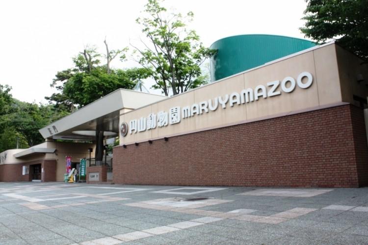 20代30代中心円山動物園散策