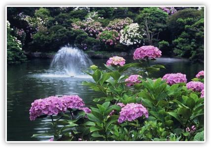 恋活散策 in 保和苑