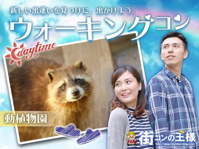 上野動物園ウォーキングコン