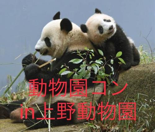 動物園コンin上野動物園