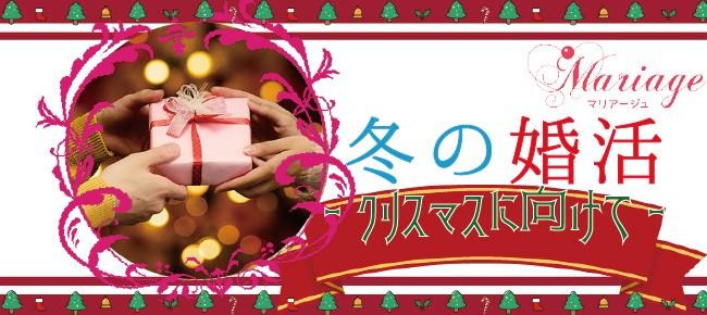 冬の婚活♪~クリスマスに向けて~