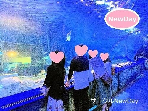 6/22 水族館の散策コンin海遊館