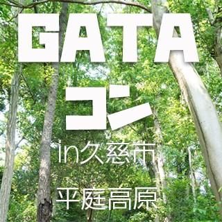 GATAコンプロジェクト