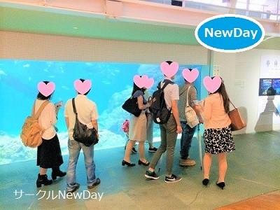 7/22 水族館コン in 須磨海浜水族園