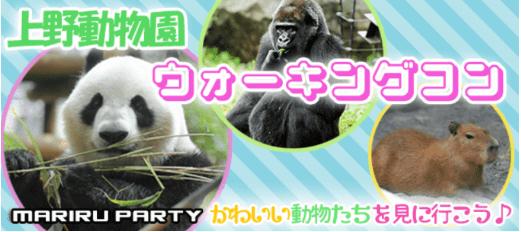 【一人参加限定企画】上野動物園ウォーキングコン