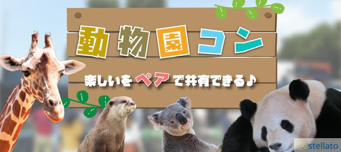 動物園デートでお互いのことがわかる@上野動物園