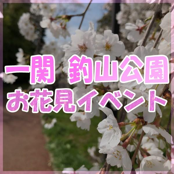 2019 一関 釣山公園 お花見フェスティバル!!!