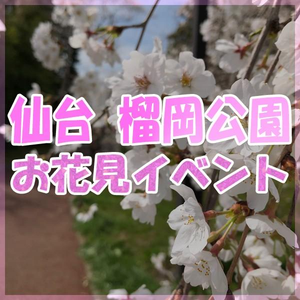 2019 仙台 榴岡公園 お花見フェスティバル!!!