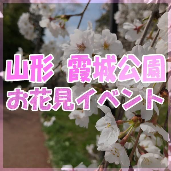 2019 山形 霞城公園 お花見フェスティバル!!!
