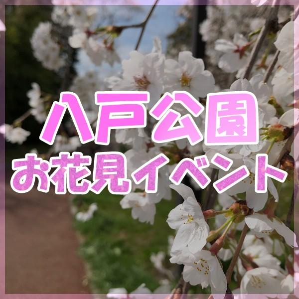 2019 八戸公園 お花見フェスティバル!!!