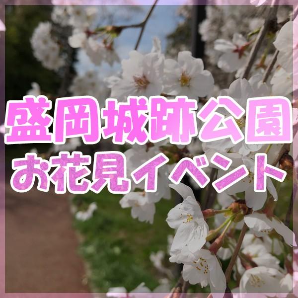 2019 盛岡城跡公園 お花見フェスティバル!!!