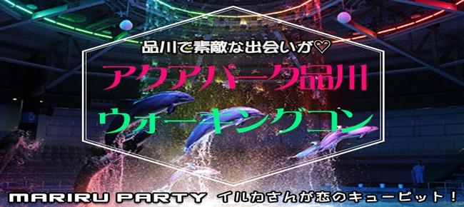 【一人参加限定】品川アクアパークウォーキングコン☆