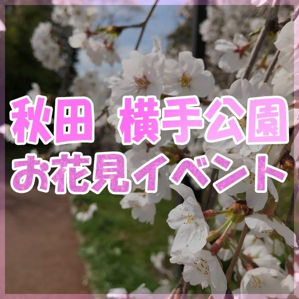 2019 横手公園 お花見フェスティバル!!!