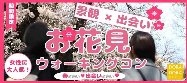 4/1 靖国×小石川桜探索ウォーキング街コン