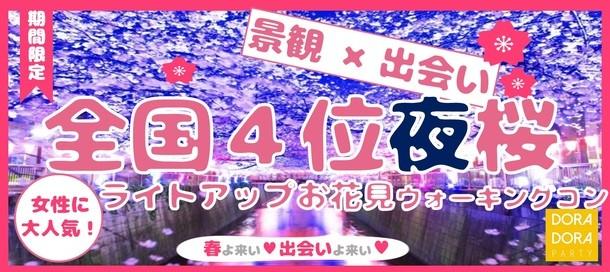 4/1 千鳥ヶ淵緑道 夜桜ウォーキング街コン