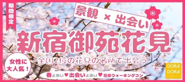 3/17 新宿御苑 桜探索ウォーキング街コン