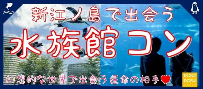 3/17 江ノ島 ゲーム感覚で出会いを楽しめる水族館街コン