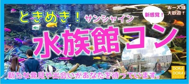 4/27 池袋 話題の水族館で出会える!新感覚街コン
