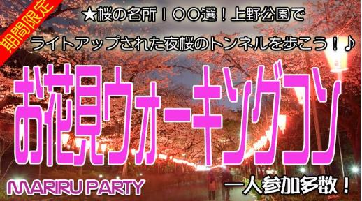 夜桜お花見ウォーキングコン IN 上野公園☆