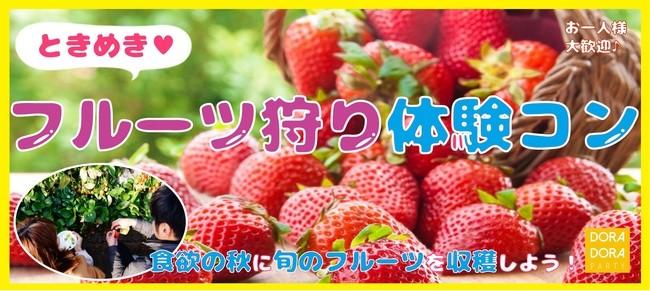 3/17 世田谷 ときめき収穫体験街コン