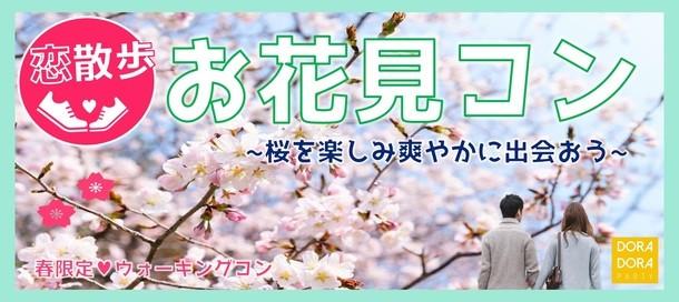 4/6 大宮 春の桜探索ウォーキング街コン