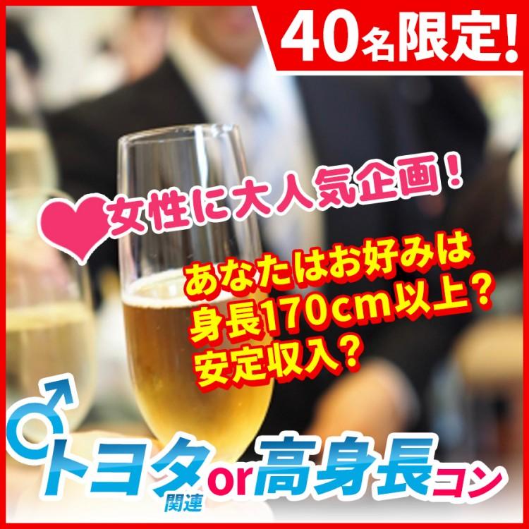 トヨタ関連or高身長in豊田