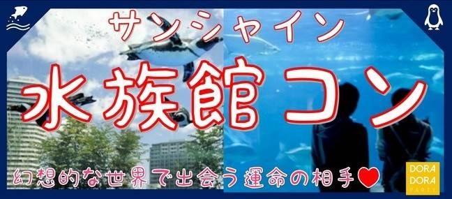 5/1 池袋 サンシャイン水族館☆新感覚街コン