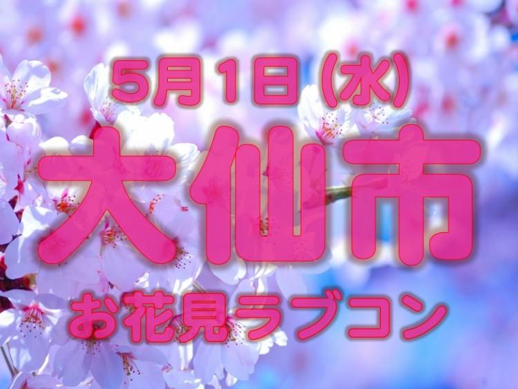 大仙市★桜の季節の恋物語 ~お花見で素敵な出会いを~
