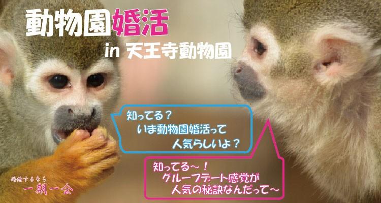 動物園婚活 in 大阪/天王寺動物園|趣味コン