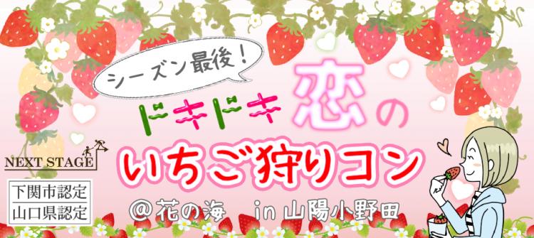 緊急開催【22〜34才】ドキドキ恋のいちご狩りコン @花の海