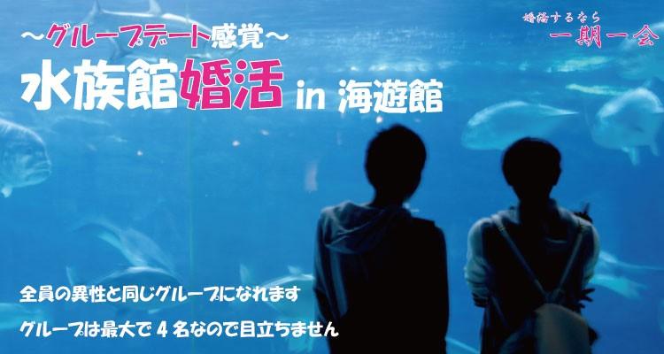 趣味コン|水族館婚活 in 大阪/海遊館
