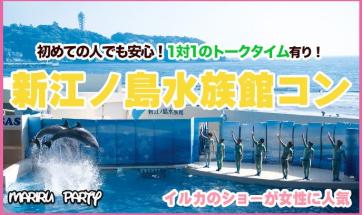 【お酒が好きな人限定】  新江ノ島水族館ウォーキングコン☆ 爽快な景色と開放感溢れる水族館での出会いは思い出になります♪ 2/22開催