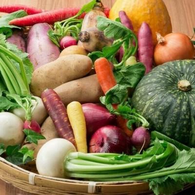 ものすご〜く珍しい新鮮な春野菜たっぷり ものすご〜く珍しい新鮮な春野菜たっぷりのピザ、パスタ作りに挑戦!!