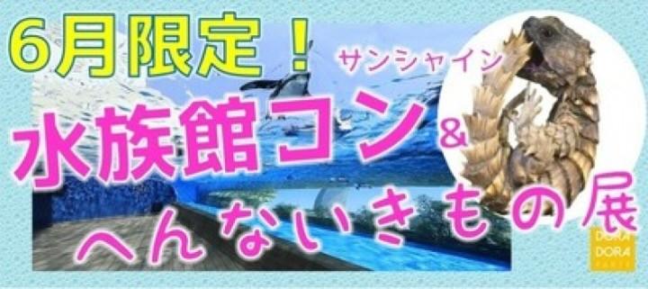 6/23 20代限定池袋サンシャイン水族館コン