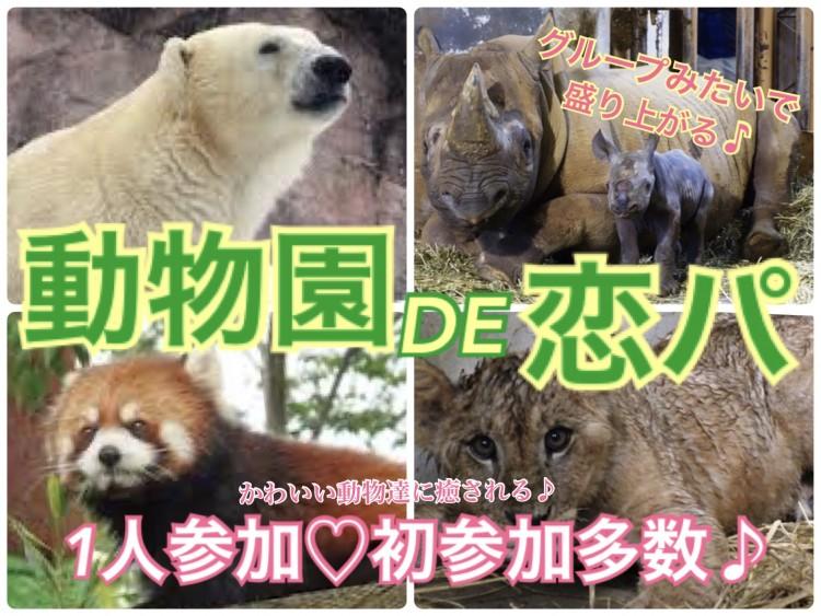 第4回 動物園DE恋パ@八木山動物園